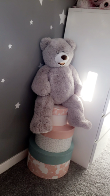 francesca memory boxes and teddy