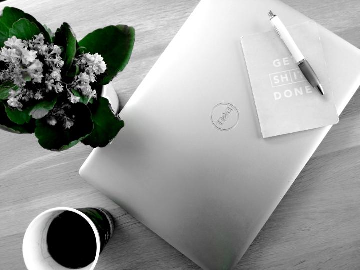 Guest Blog Update